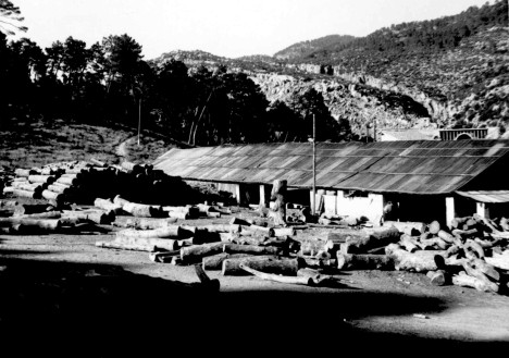 ASERRADERO 1945 RENFE VADILLO CASTRIL342