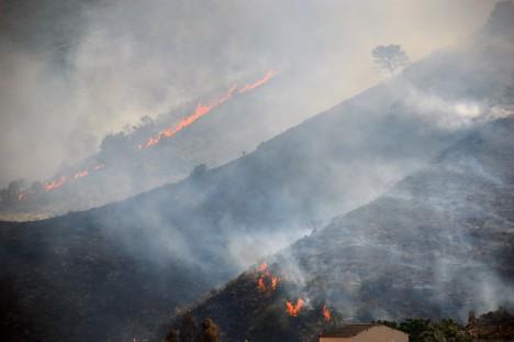 Incendi-forestal