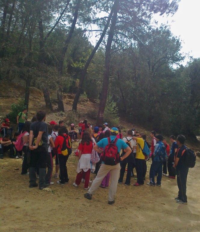 Pedagogía3 cl