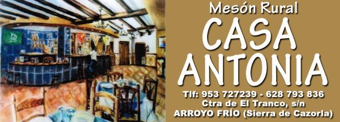 Mesón Restaurante Casa Antonia copia