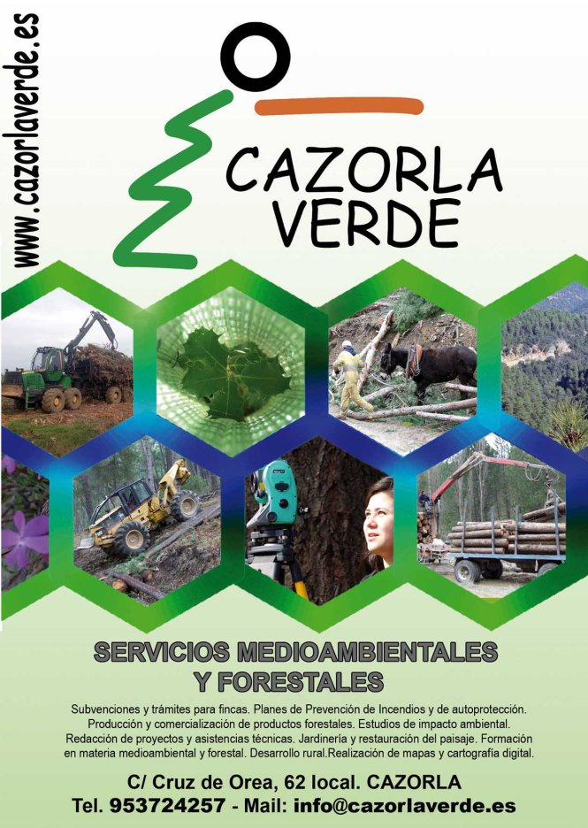 Cazorla Verde copia red